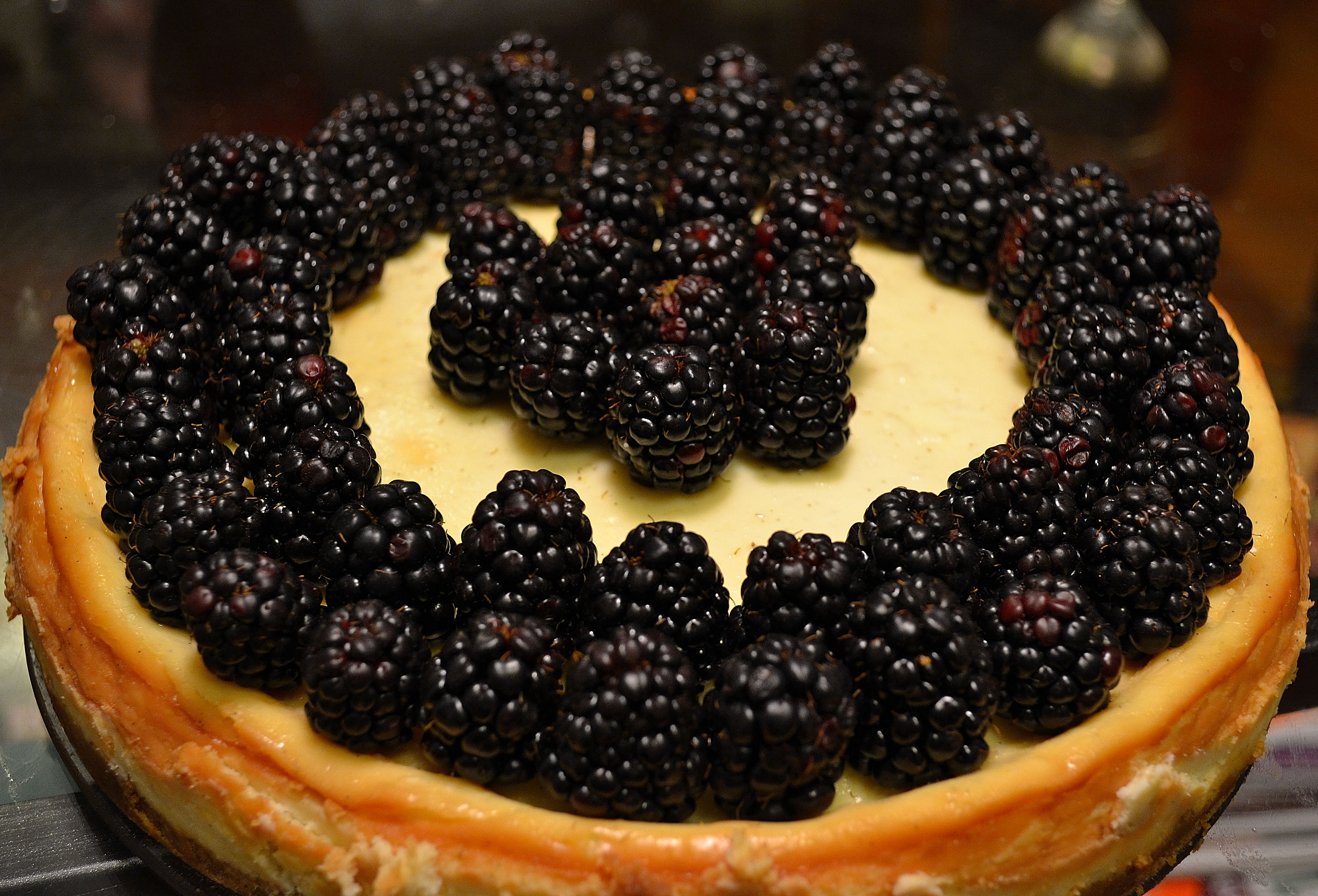 Vanilla bean and crme frache cheesecake with blackberries the vanilla bean and crme frache cheesecake with blackberries forumfinder Gallery