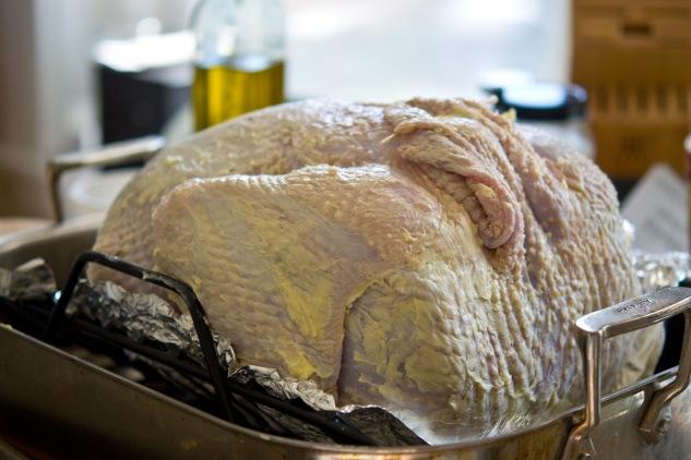 turkeyday1